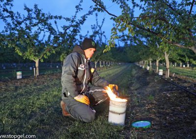 Igniting STOPGEL GREEN candle to protect fruits against spring frost