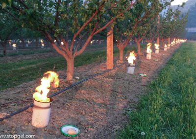 STOPGEL anti-frost candles and their high calorific value protecting an orchard