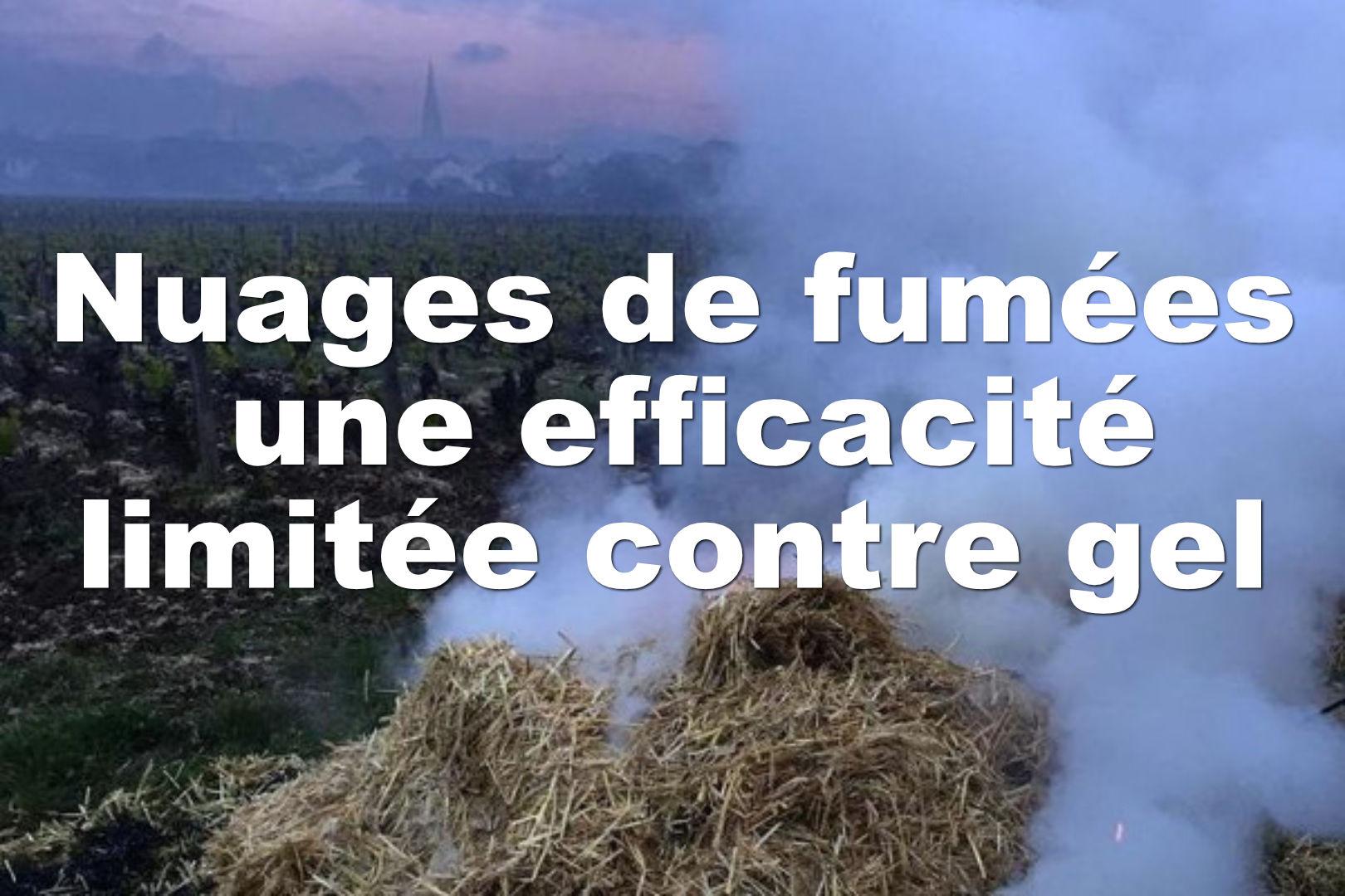 Les nuages de fumée ont une efficacité limitée contre le gel